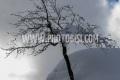 2021 FIS ALPINE WORLD SKI CHAMPIONSHIPS, AC WOMENCortina D'Ampezzo, Veneto, Italy2021-02-08 - MondayImage shows AC Women Cancelled